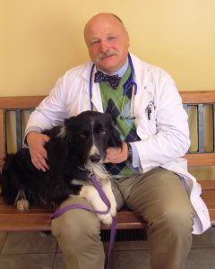 Dr. Corradini sits in the reception area of the vet clinic with his Border Collie resting on his lap.
