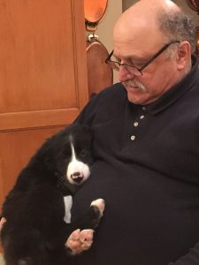 Dr. Corradini holds a small Border Collie puppy